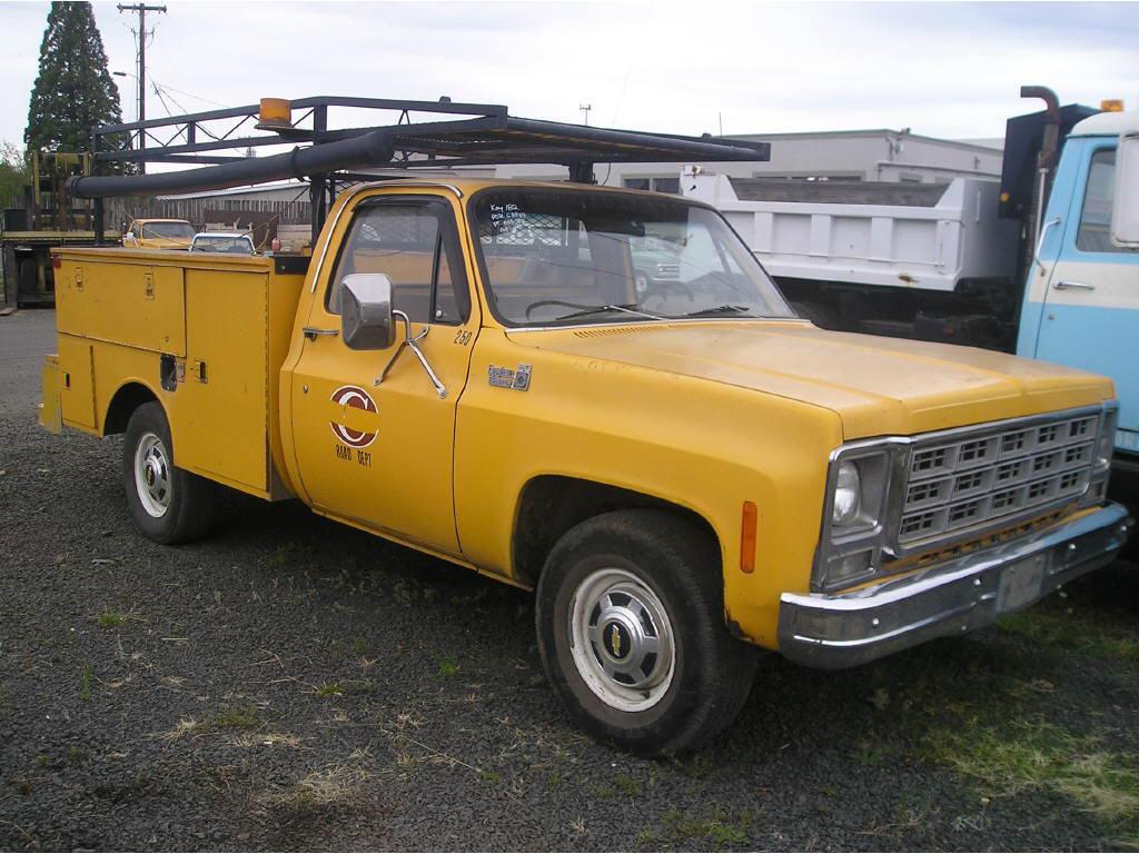 1979 Chevrolet Chev C20 servic